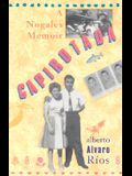 Capirotada: A Nogales Memoir