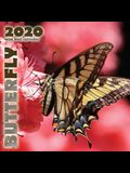 Butterfly 2020 Mini Wall Calendar