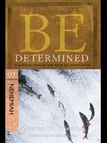 Be Determined: Standing Firm in the Face of Opposition: OT Commentary Nehemiah