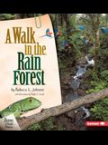A Walk in the Rain Forest