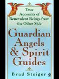Guardian Angels and Spirit Guides (Visions, Signet)