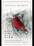 Gift of the Red Bird: A Spiritual Encounter