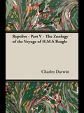 Reptiles - Part V - The Zoology of the Voyage of H.M.S Beagle