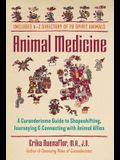 Animal Medicine: A Curanderismo Guide to Shapeshifting, Journeying, and Connecting with Animal Allies