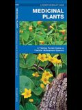 Medicinal Plants: An Introduction to Familiar North American Species