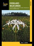 Everglades Wildflowers: A Field Guide to Wildflowers of the Historic Everglades, Including Big Cypress, Corkscrew, and Fakahatchee Swamps