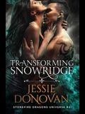 Transforming Snowridge