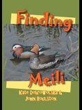 Finding Meili