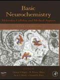 Basic Neurochemistry: Molecular, Cellular and Medical Aspects [With CDROM]