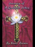 Journey of a Grateful Lotus