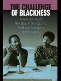 The Challenge of Blackness: The Institute of the Black World and Political Activism in the 1970s