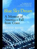 Blue Sky Dream: A Memoir of American (Ameri)Ca's Fall from Grace