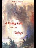 A Viking Epic, Part 1 Viking !