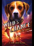 Wild & Chance