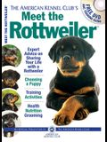 Meet the Rottweiler