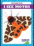 I See Moths