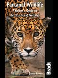 Bradt Pantanal Wildlife: A Visitor's Guide to Brazil's Great Wetland