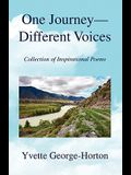 One Journey - Different Voices