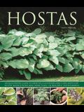 Hostas: An Illustrated Guide to Varieties, Cultivation and Care, with Step-By-Step Instructions and More Than 130 Beautiful Ph