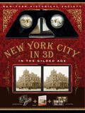 New York City in 3D in the Gilded Age [With Steroscope]