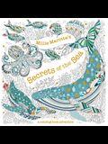 Millie Marotta's Secrets of the Sea: A Coloring Book Adventure