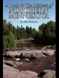A Book in the Dialect of Northern Minnesota