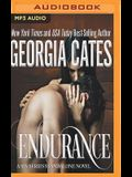 Endurance: A Sin Series Standalone Novel