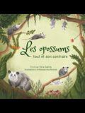 Les opossums: tout et son contraire