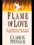 Flame of Love: Three Views on the Destiny of the Unevangelized
