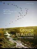 Groups in Action: Evolution and Challenges (with Workbook and DVD) [With DVD]