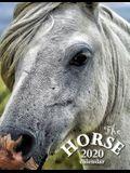 The Horse 2020 Calendar