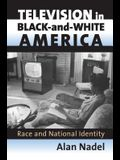 Television in Black-And-White America: Race and National Identity