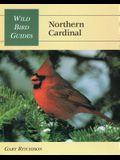Wild Bird Guide: Northern Cardinal