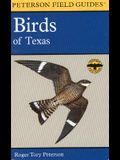 A Field Guide to the Birds of Texas: and Adjacent States (Peterson Field Guides)