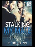 Stalking My Mate [Assassins Inc. 5] (The Stormy Glenn ManLove Collection)
