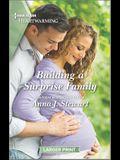 Building a Surprise Family: A Clean Romance