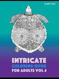 Intricate Coloring Book For Adults Vol 4