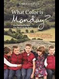 What Color Is Monday?: How Autism Changed One Family for the Better