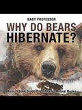 Why Do Bears Hibernate? Animal Book Grade 2 - Children's Animal Books