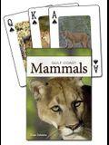Mammals of the Gulf Coast