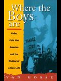 Where the Boys Are: Cuba, Cold War and the Making of a New Left