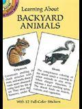 Learning about Backyard Animals