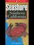 Seashore of Southern California