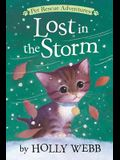 Lost in the Storm