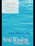 Soul Wisdom: Volume One a Chronicle of Angelic Contact