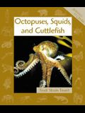 Octopuses, Squids, and Cuttlefish