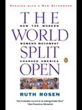 The World Split Open: How the Modern Women's Movement Changed America