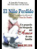 El Niño Perdido: Un Pequeno En Búsqueda del Amor de Una Familia