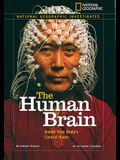 The Human Brain: Inside Your Body's Control Room