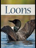 Loons Playing Cards